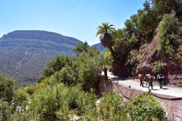 hiking participants