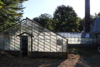 The late afternoon sun shines on the greenhouse panes.