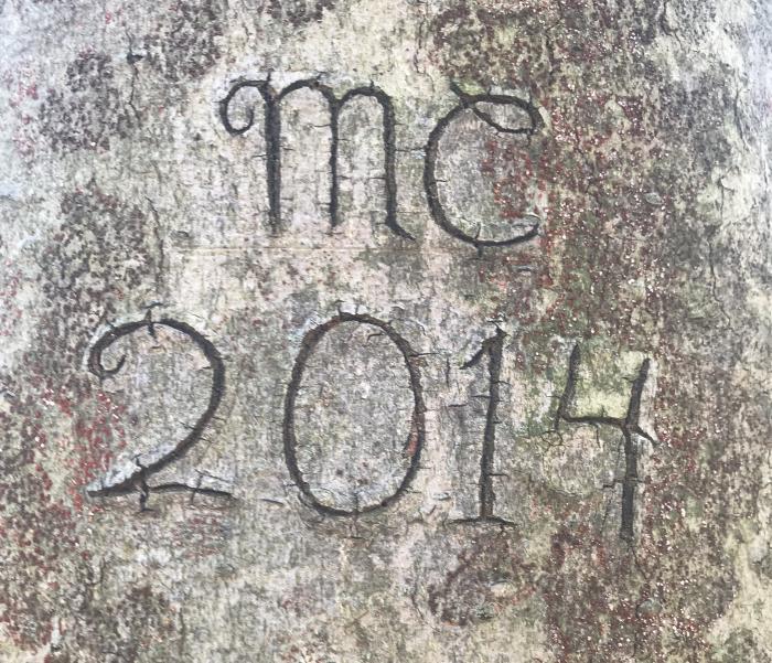 mc 2014