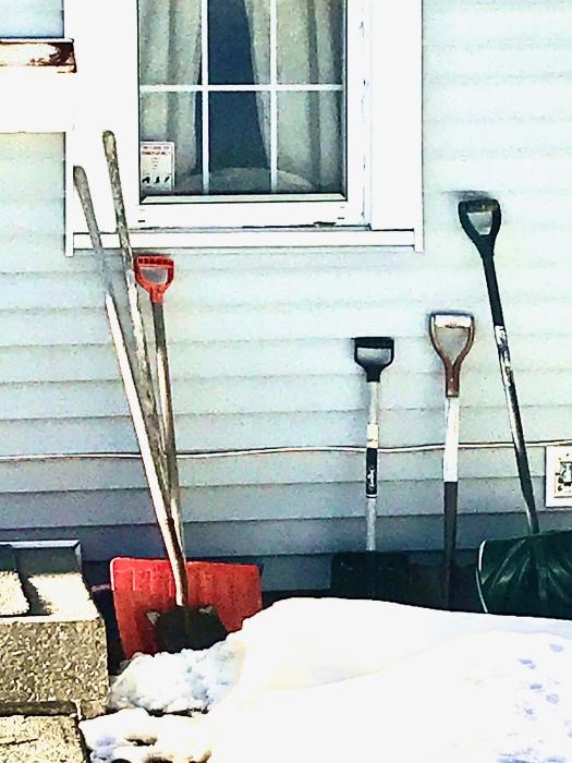IMG_1247 shovel