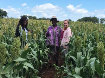 Kirsti Lattu assists with a post-drought crop assessment in Zimbabwe.