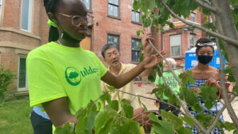 Outdoor Promise fellows work with Newburgh residents to care for new trees.